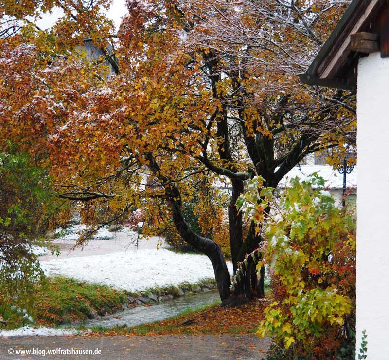 Eine leichte Schneedecke lag entlang des Loisach-Ufers.